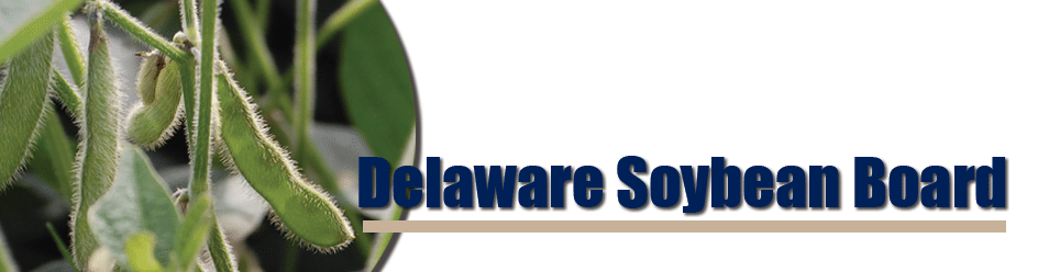 Delaware Soybean Board